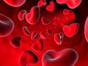gruppo sanguigno ok