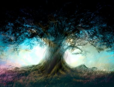 albero-della-vita1